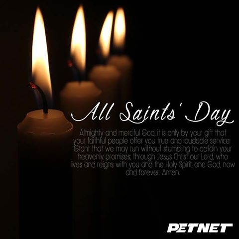 Similiar all souls day candles keywords 70 best all saints day 2017 greeting ideas m4hsunfo